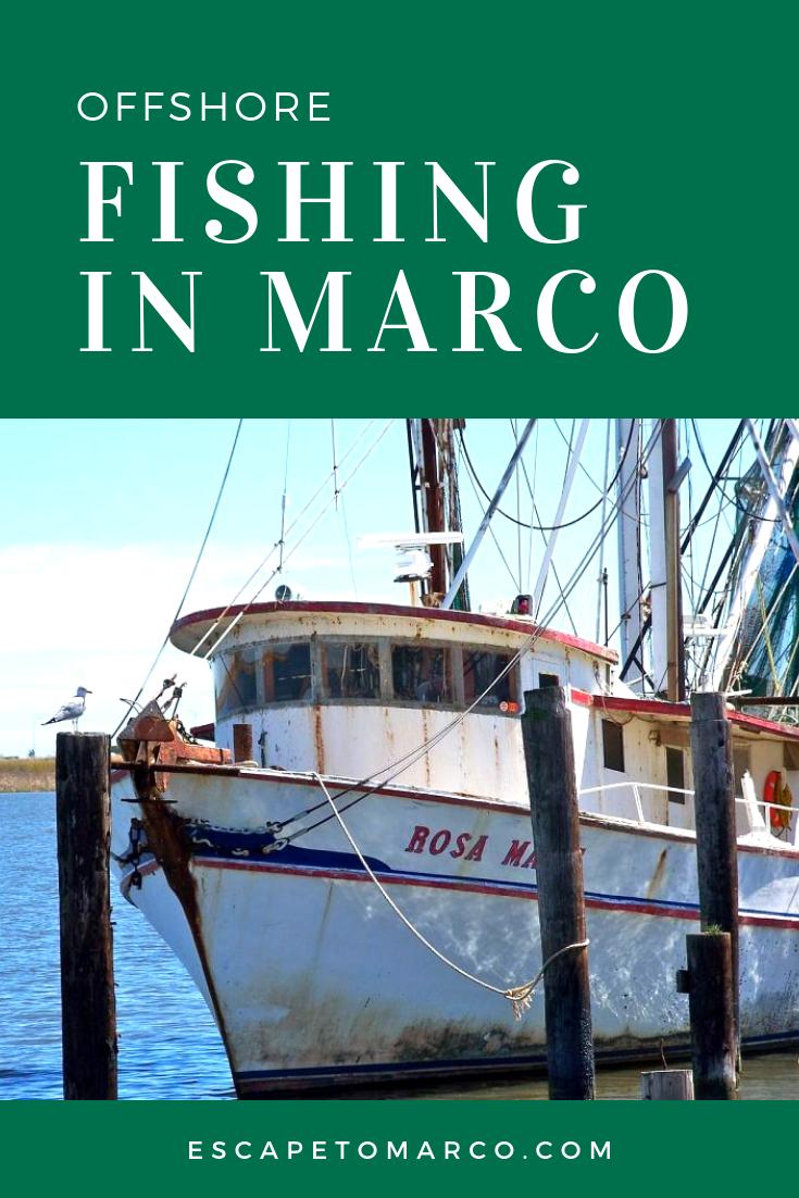 Offshore Fishing on Marco Island   EXPLORE MARCO ISLAND