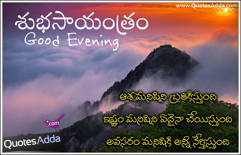 Pin By Angelica Florence On Angelica Florence Quotes Telugu