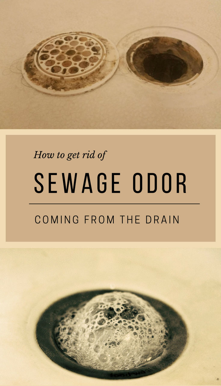 How To Get Rid Of Sewage Odor Coming From The Drain Sewer Smell In Bathroom Sink Drain Smell Shower Drain Cleaner