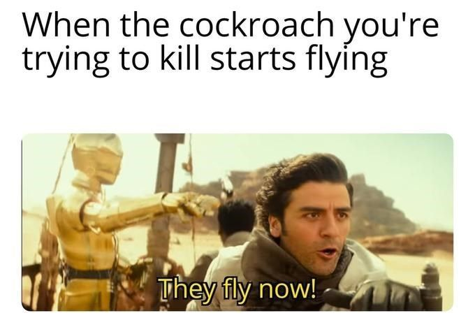 Stormtroopers Fly Now According To A New Clip From The Rise Of Skywalker Star Wars Humor Star Wars Memes Star Wars Fandom
