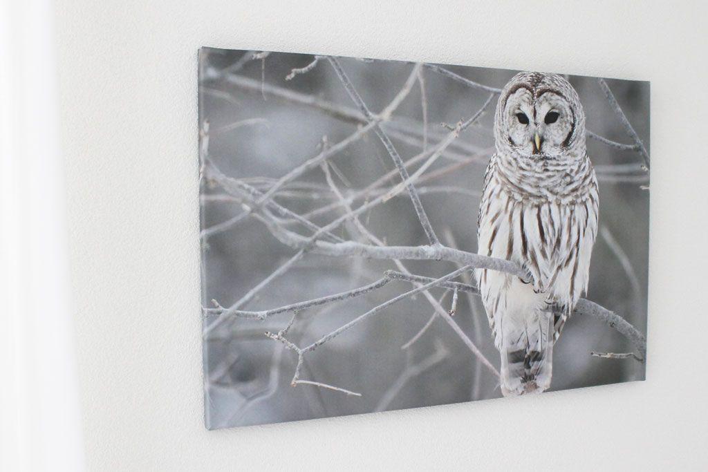 Modern Interieur Schilderij : Bol schilderij modern in zilver cm