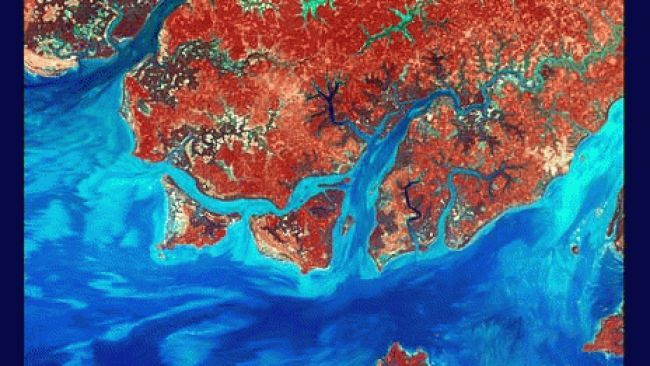 Guinea-Bissau is a small country in West Africa. Complex patterns can be seen in the shallow waters along its coastline, where silt carried by the Geba and other rivers washes out into the Atlantic Ocean.