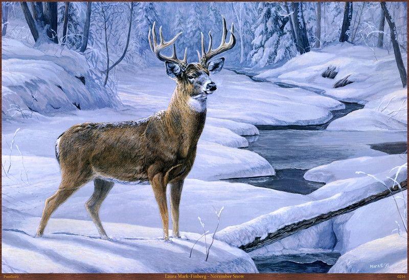 Животные зимой в картинах. Обсуждение на LiveInternet - Российский Сервис Онлайн-Дневников