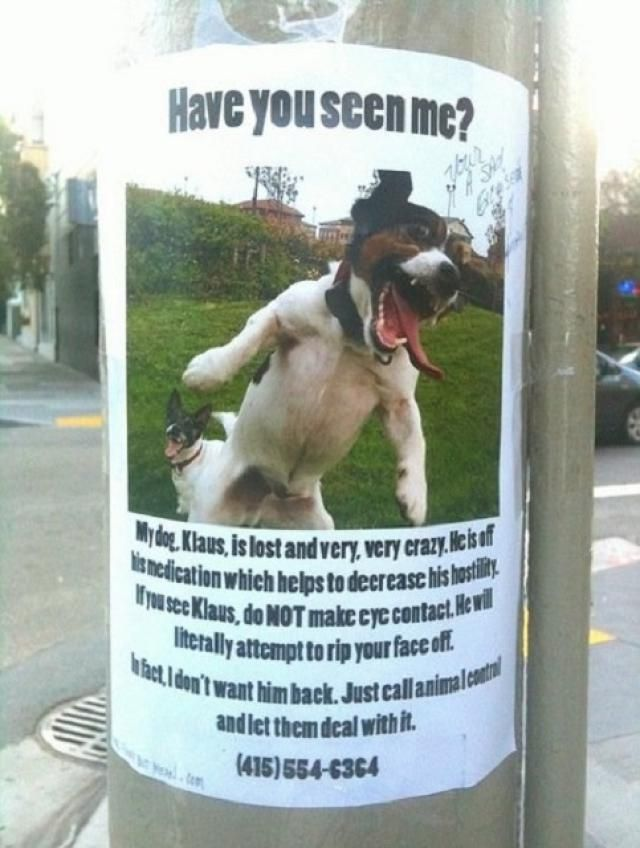 20 Funny Lost And Found Pet Posters Losing A Dog Funny Signs Funny