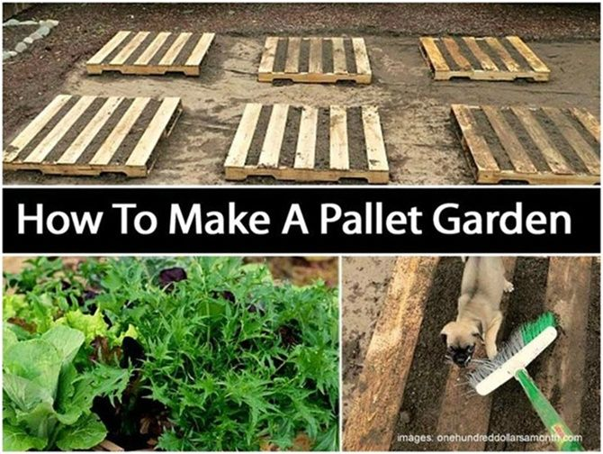 pallet gardening ideas diyhowto create a pallet garden video - Garden Ideas With Pallets