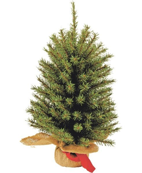Small Christmas Trees that are best as Tabletop Christmas Trees - how to decorate a small christmas tree