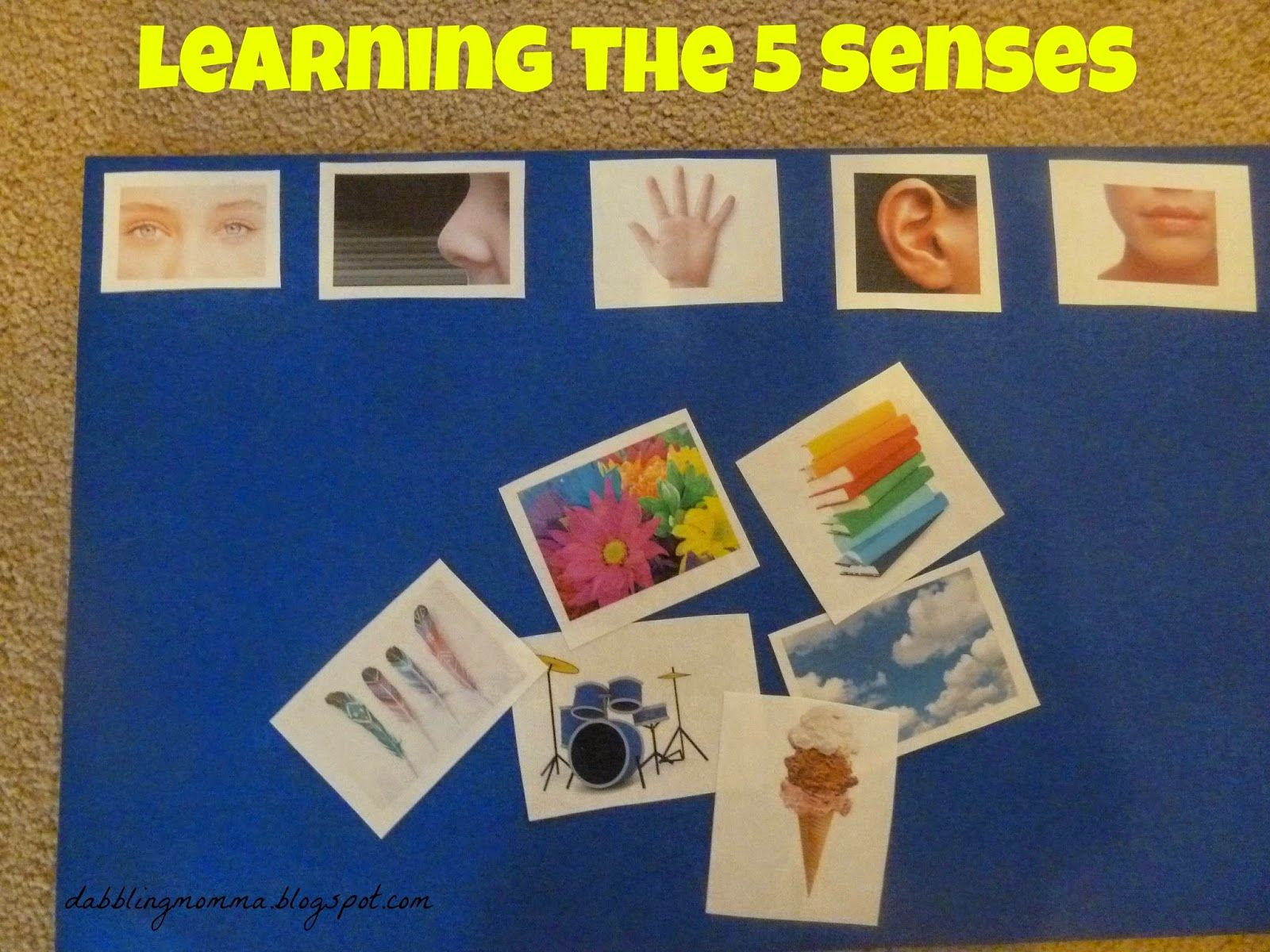 Dabblingmomma Learning About Our 5 Senses