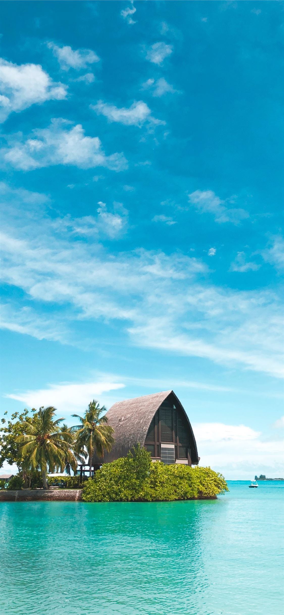 brown hut near coconut palm trees under blue sky iPhone 11