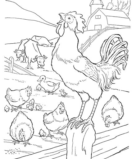 Farm Animal Coloring Pages Farm Animal Coloring Pages Animal Coloring Pages Farm Coloring Pages