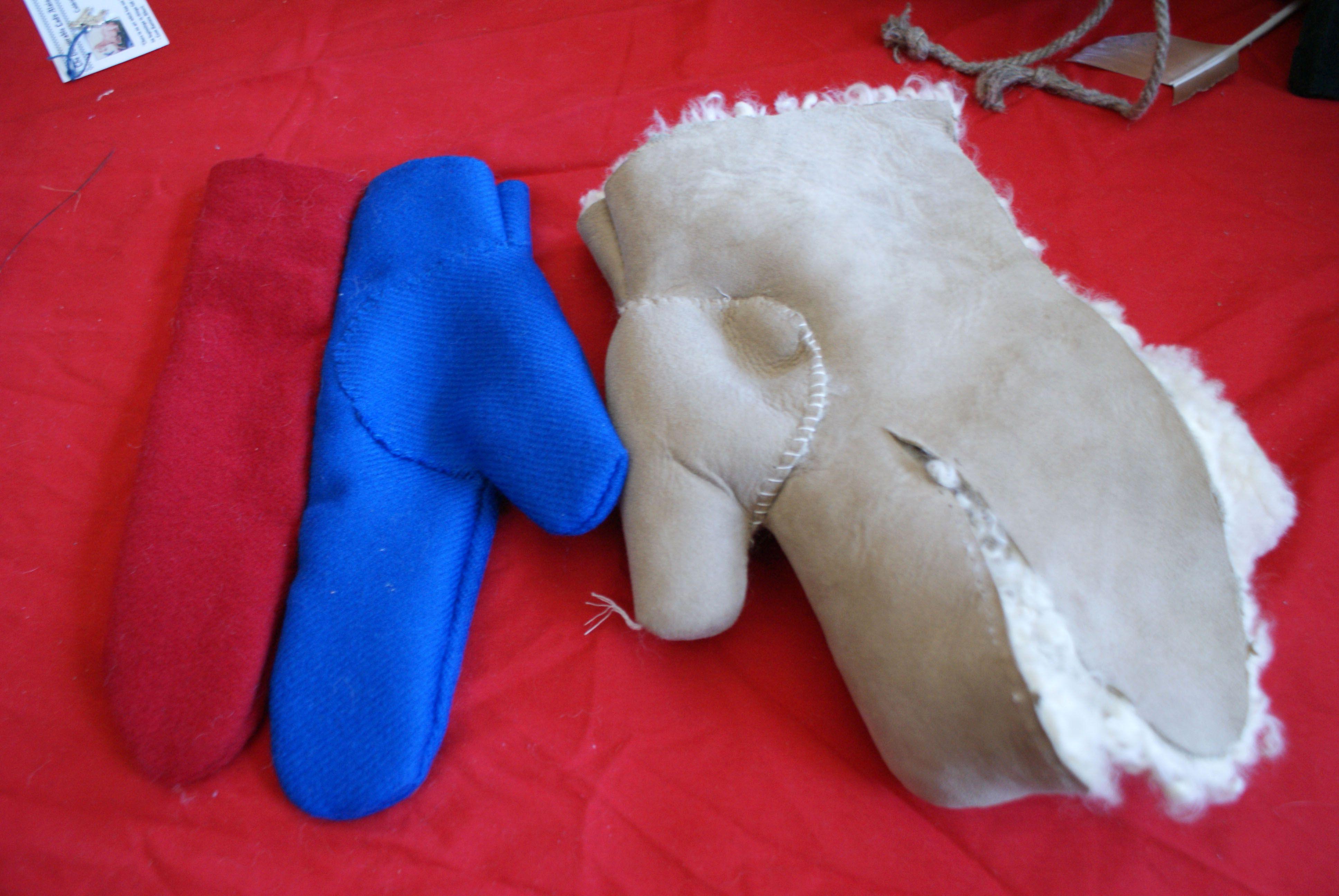 Map Of Poitiers%0A Sheepskin  fingered glove experiment  by THL Alais de Poitiers