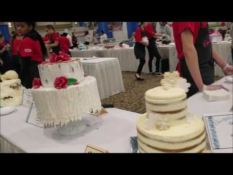 Chocolate Fest Vlogging #36