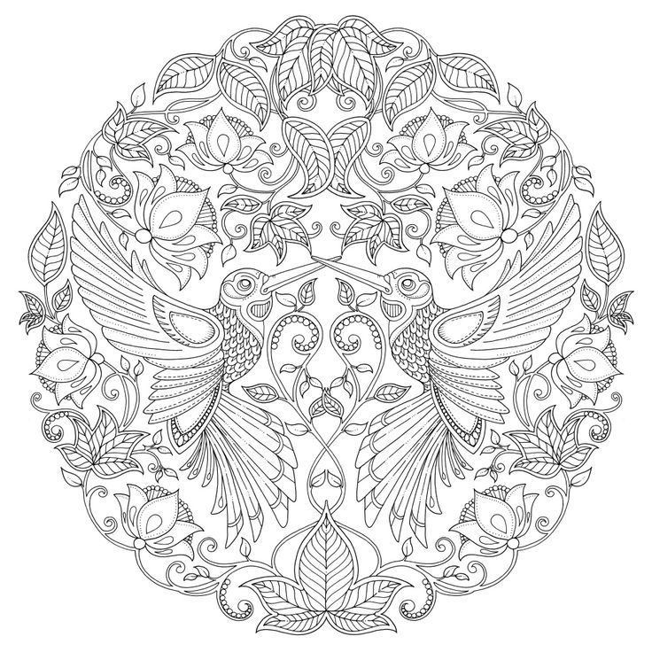 HUMMIG BIRDS MANDALA Johanna Basford TO COLOUR
