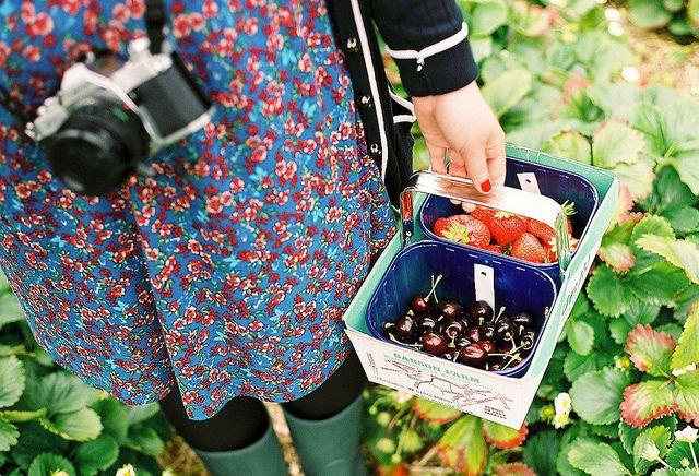 strawberrys and cherrys