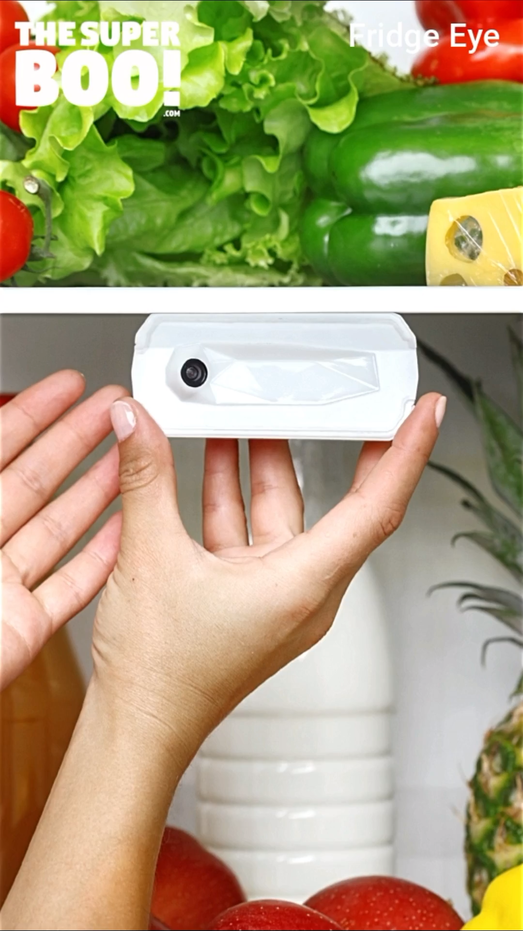 Smart Refrigerator Camera