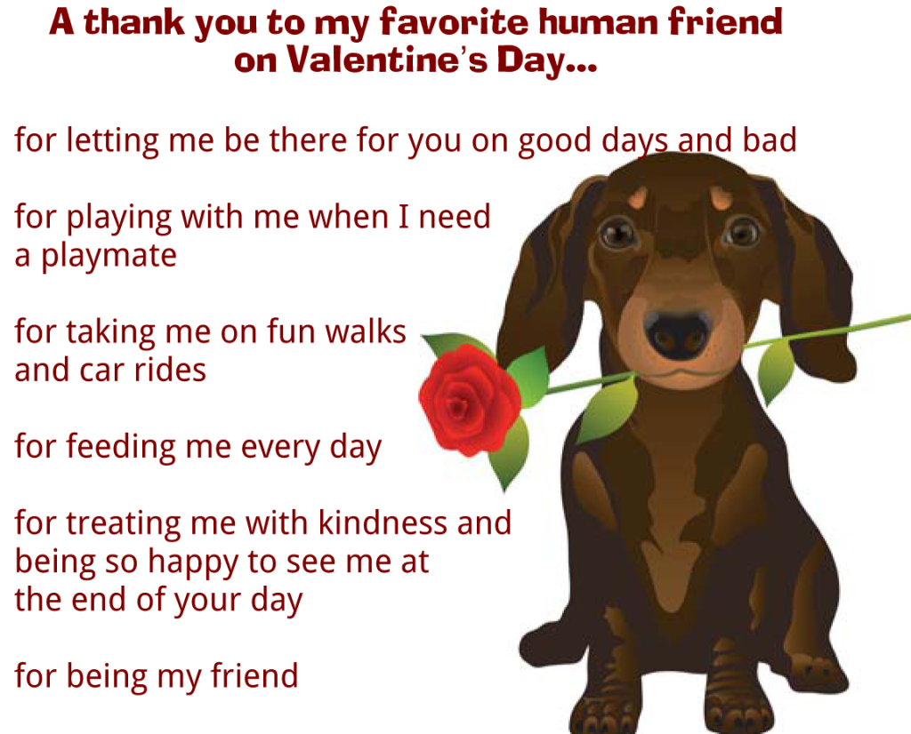 Valentine S Day Message From Dog So Much Petential Pets And