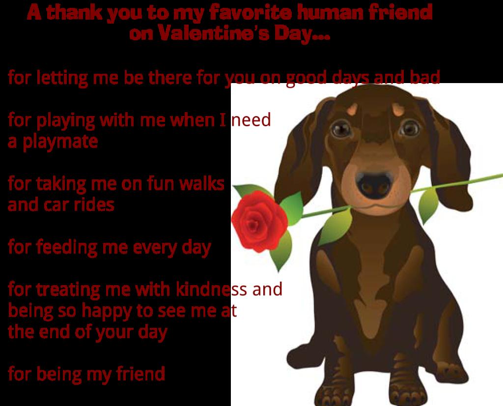 Valentine S Day Message From Dog Valentines Day Dog Dog Valentines Valentines Day Messages