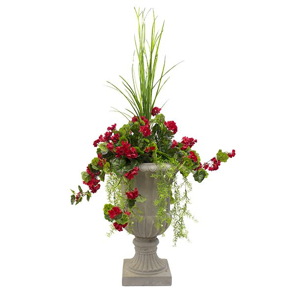 Arrangement ext rieur g ranium rouge 64 39 39 g raniums for Plante exterieur fleur rouge