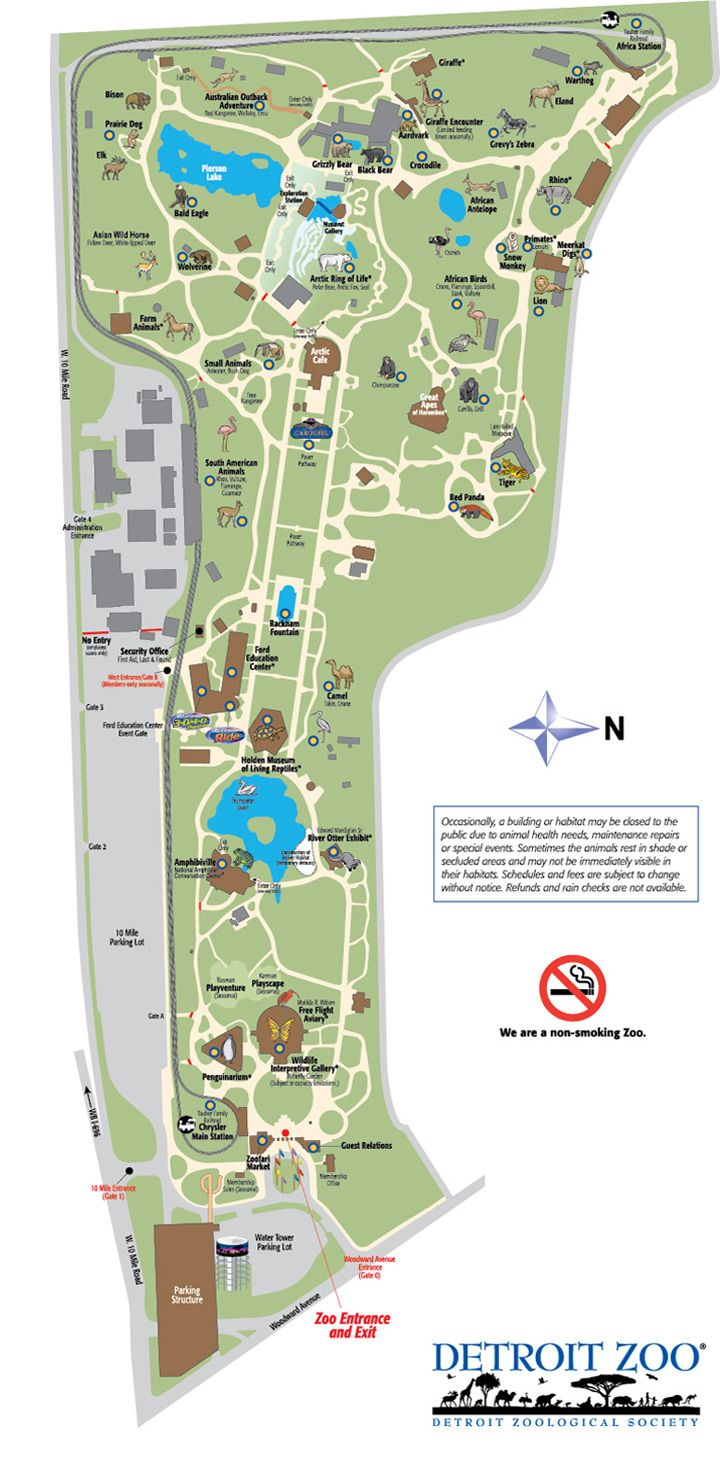 Detroit Zoo Map | Detroiter not a Detracter. | Zoo map, Detroit zoo, on