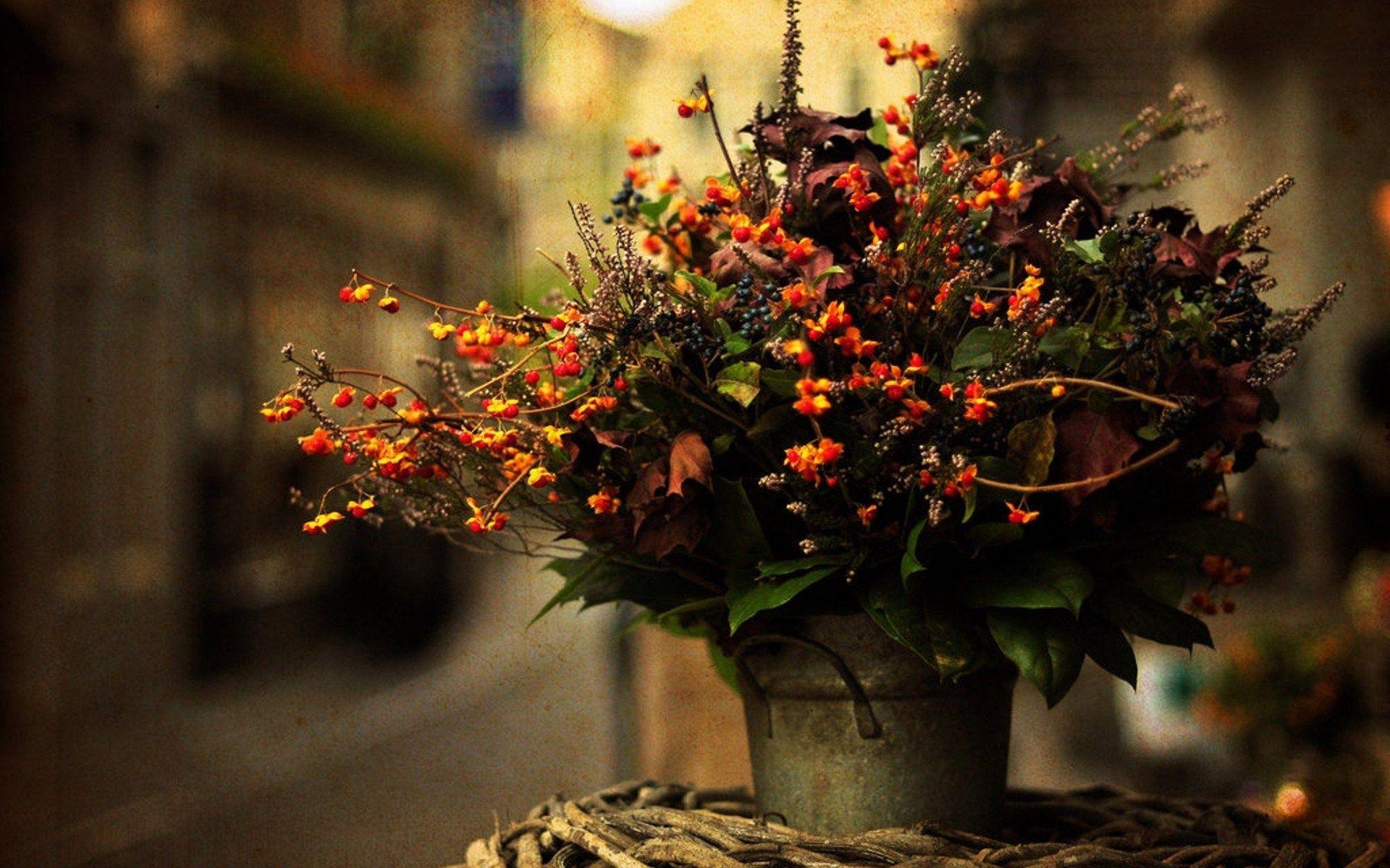 vase flowers bouquet autumn photo | Autumn | Pinterest | Autumn ...