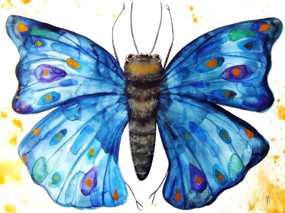 Butterfly Watercolor Painting Ink Butterfly by CelineArtGalerie, €80.00