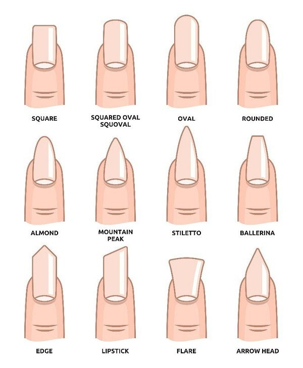 The 12 different Nail Shapes.