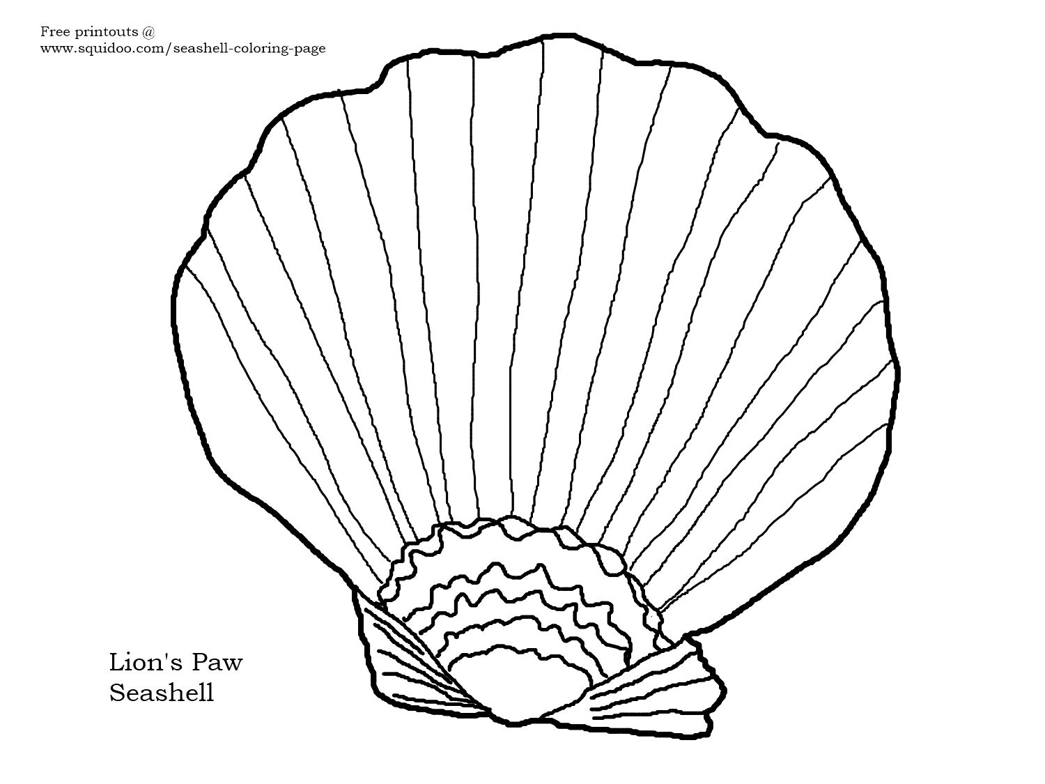 Seashell Coloring Pages Sea Shell Coloring Pages Online Coloring Pages