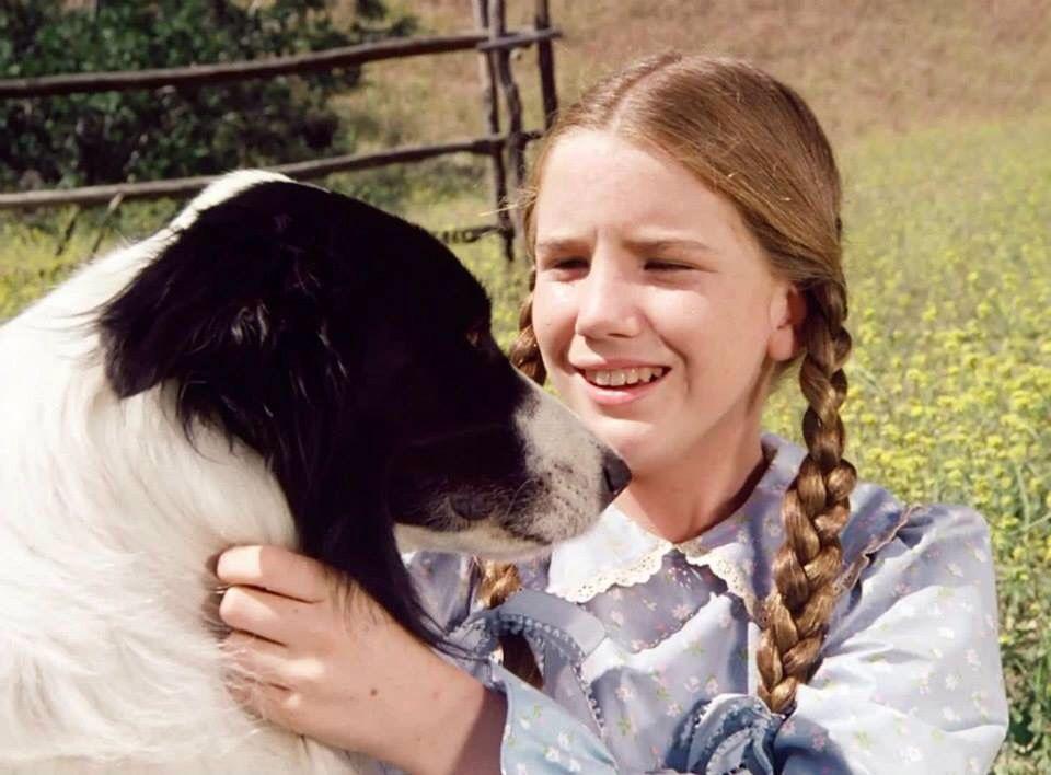 Bandit From Melissa Sue Anderson Fan Website Laura Ingalls