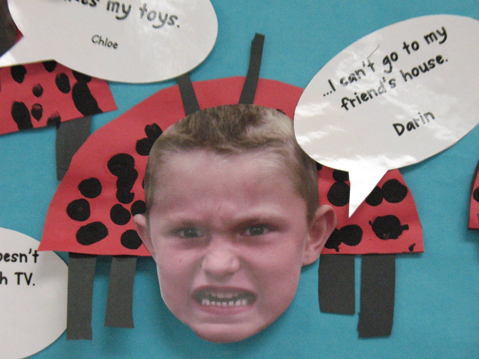 Mrs Morrow S Kindergarten Insects The Grumpy Ladybug By
