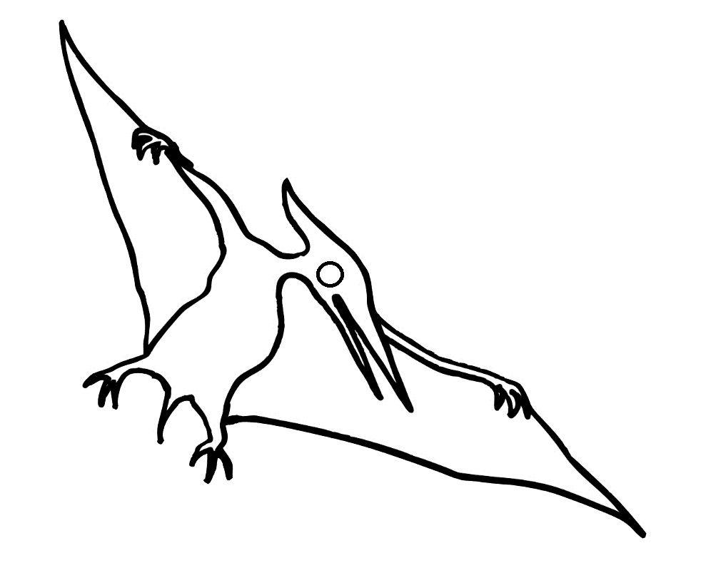 того, раскраска летающие динозавры шпалеру натягивает