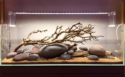 Hardscape Aquarium Google Keres 233 S Akv 225 Rium Biotope