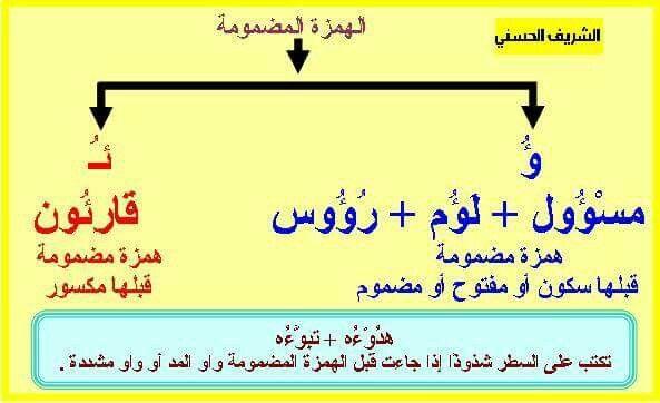 الهمزة المضمومة Arabic Language Learning Language