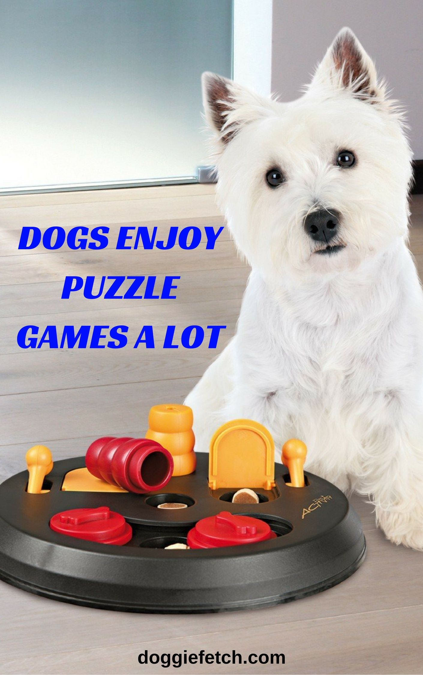 Interactive Toys For Dogs The 5 Best Toys To Keep Your Dog Busy