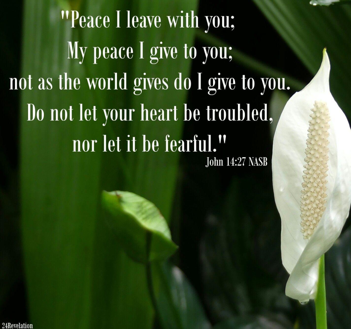 Scripture God Jesus Holy Spirit Christian Bible Nasb Peace