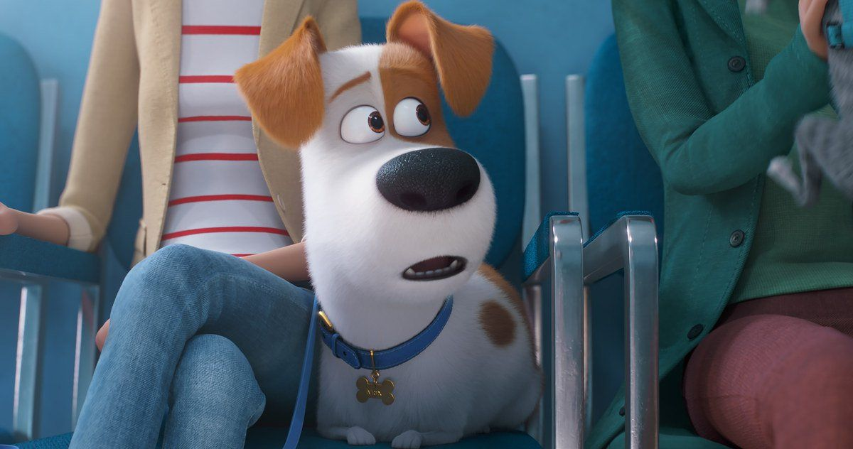 Secret Life Of Pets 2 Trailer Takes Max To The Dreaded Vet Secret Life Of Pets 2 Trailer Takes Max To The Dreade Secret Life Of Pets Dog Movies Animated Movies