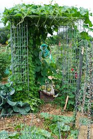 Fantastic Gallery Of Trellis Ideas For Vertical Vegetable Gardening, From  Simple To Fancy. Pictured Is Shade House Of Wire Mesh Columns, Growing Long  Melons