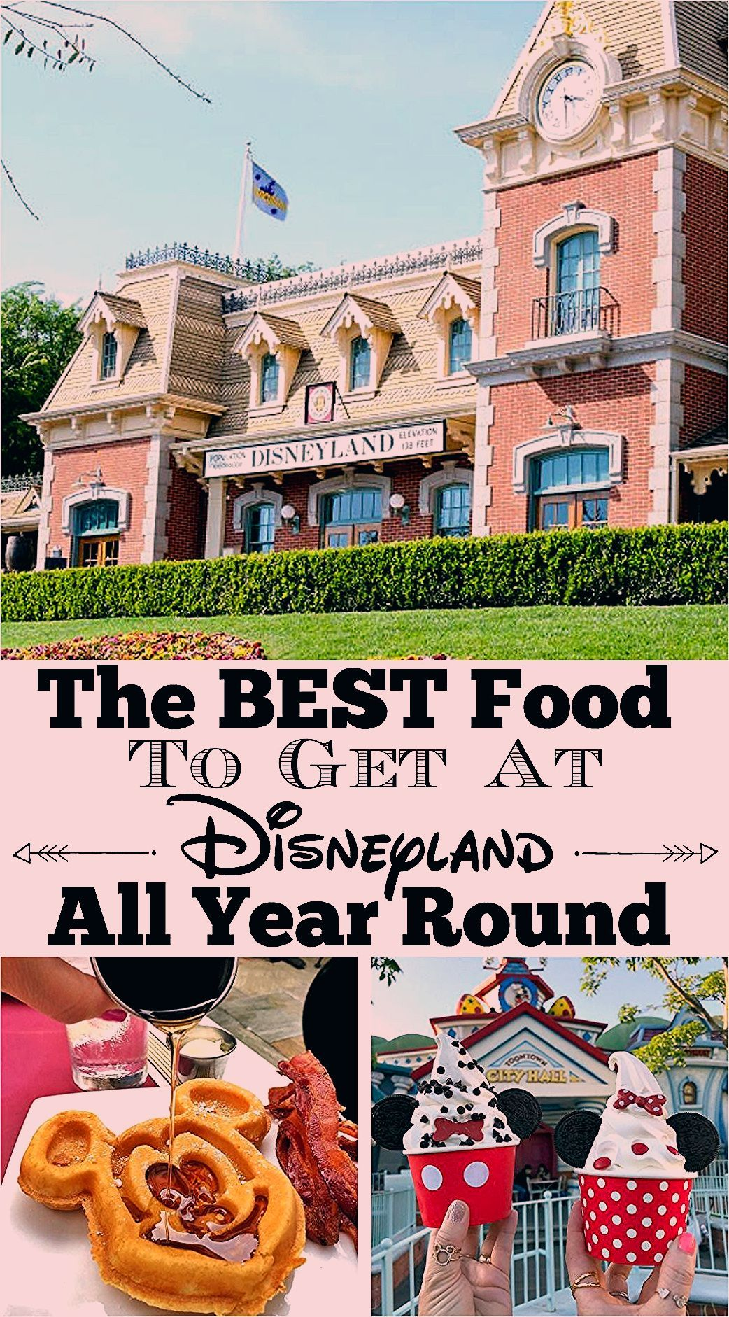 Photo of Best Food at Disneyland Available All Year Round