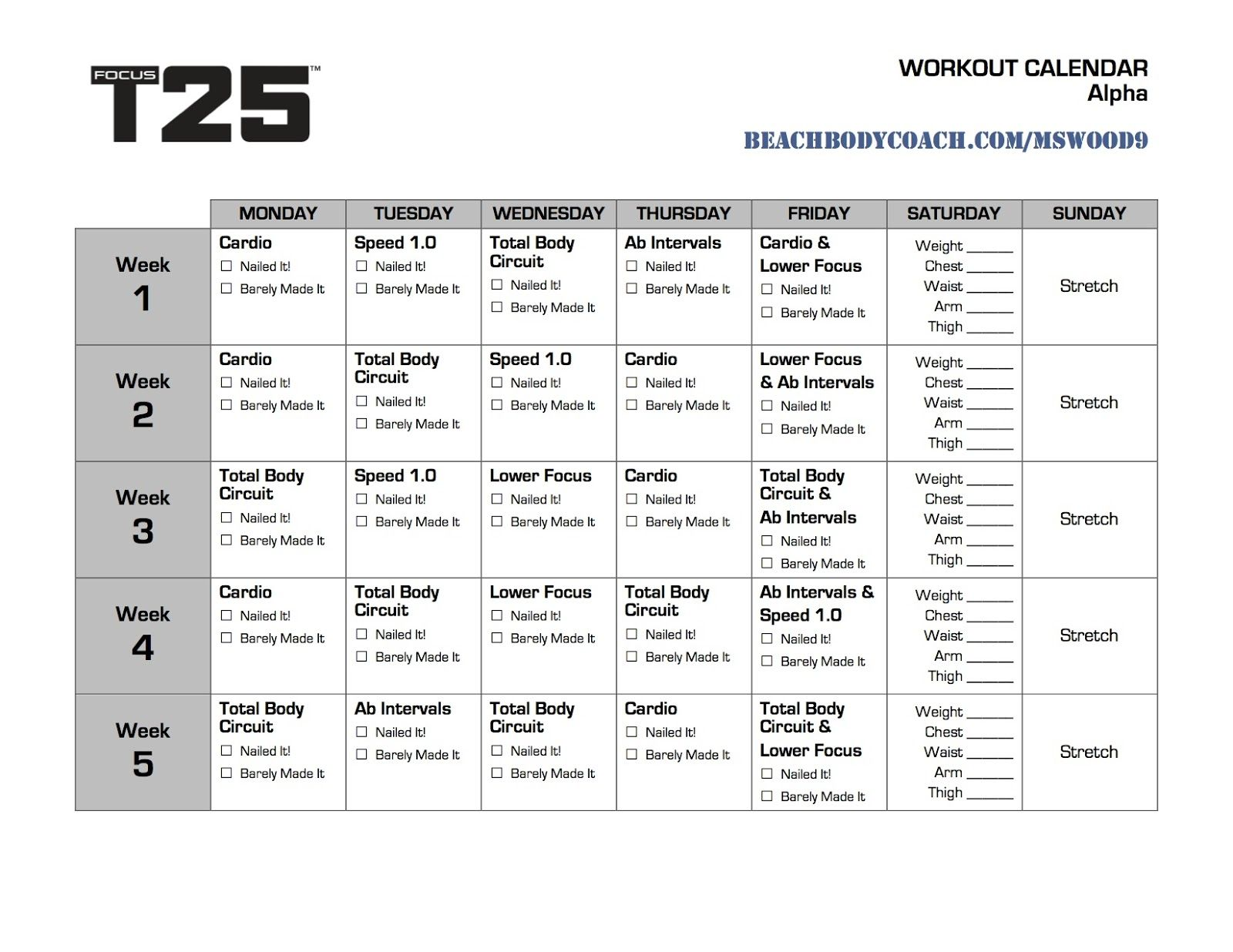 graphic about T25 Schedule Printable named T25 Get the job done Out Calendar Printable Awareness T25 calendar, Attention