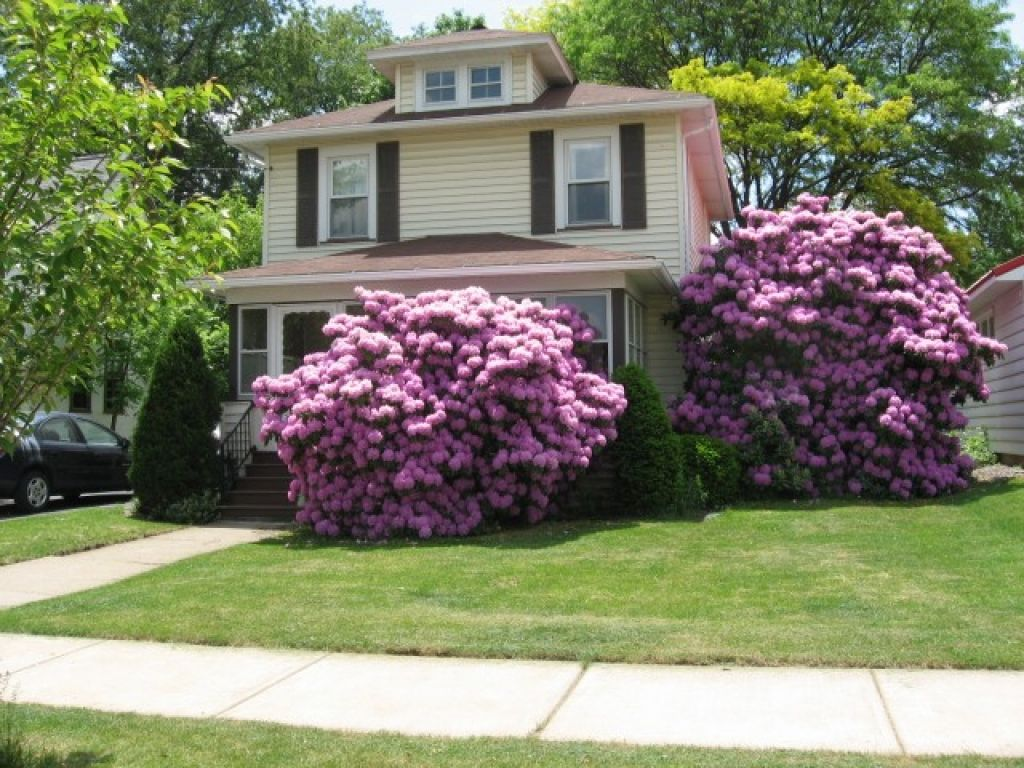 Beautiful Front Yard Privacy Ideas Part - 8: Landscape Design Ideas For Small Front Yards