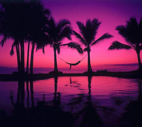 Gorgeous Sunset Tres Joli T Drole De Couleur Avec Images Papier Peint Coucher De Soleil Coucher Du Soleil Pourpre Fond Ecran Nature