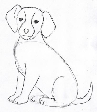 Dog Drawing 4 Now Go Back And Erase Any Extra Lines You See These