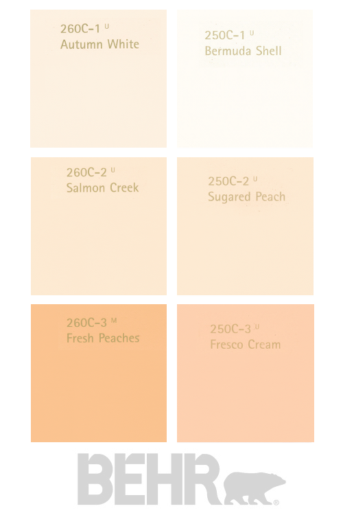 peach paint colorsMerandas Picks FAV Salmon Shades Behr Paints  Meranda Devans