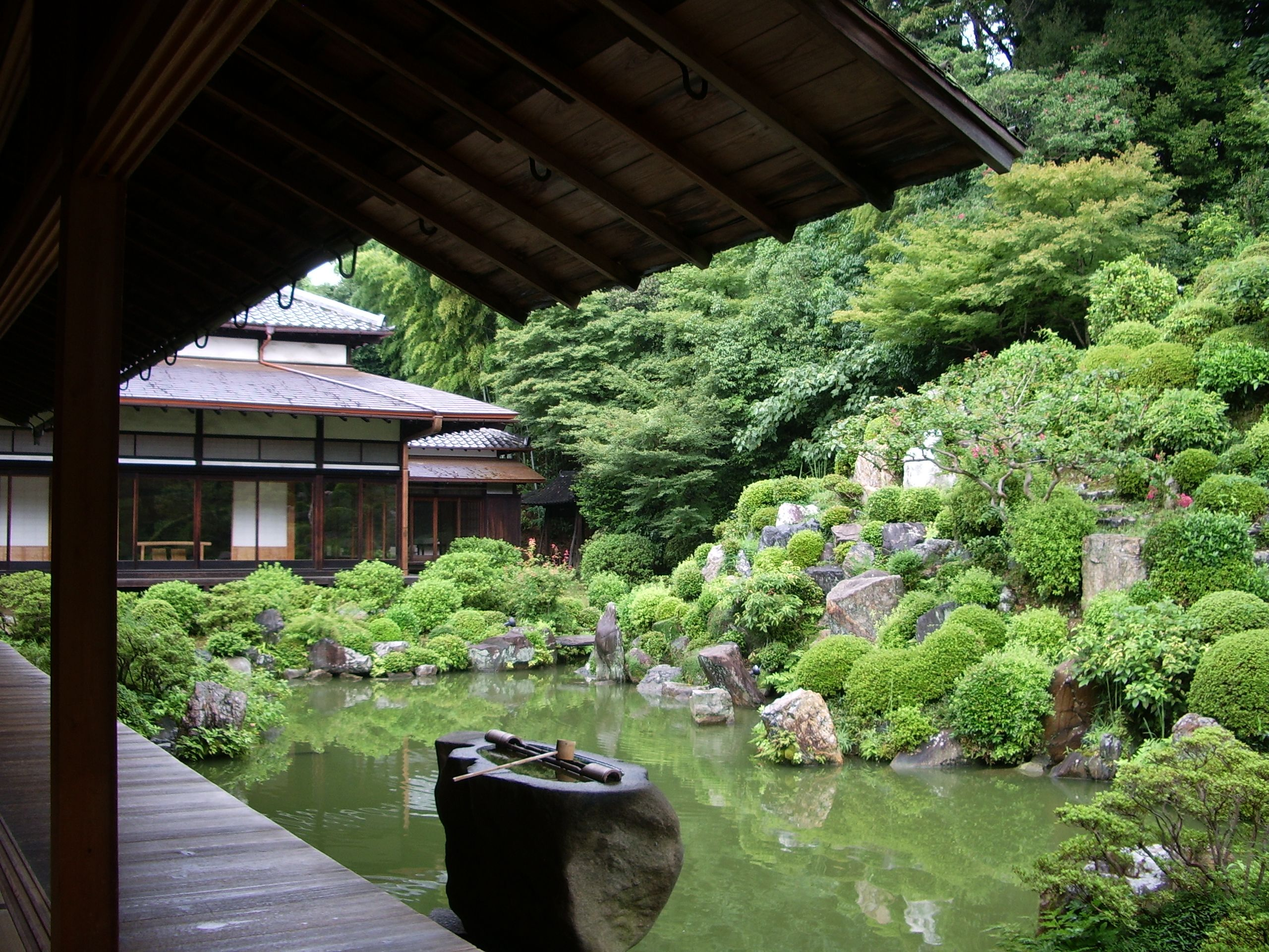 Explore Japanese Water, Water Gardens, And More