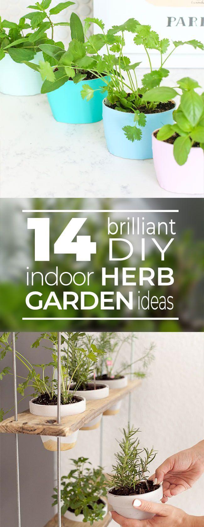 Photo of 14 Brilliant DIY Indoor Herb Garden Ideas