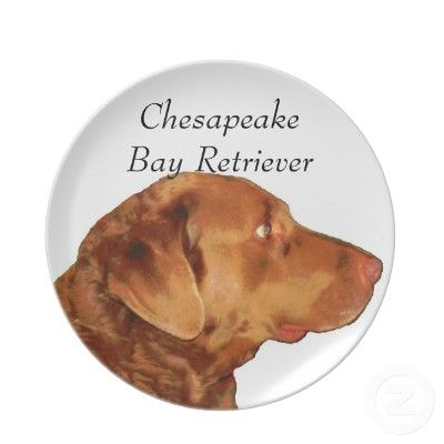 """Chesapeake Bay Retriever Plate    Created by a highly imaginative Zazzler called Cape Cod Gift Shop.     •Size: 10"""" diameter  •Vibrant, full-color printing  •Drop and break resistant  •Easy-to-clean and dishwasher safe  •Not microwave safe"""