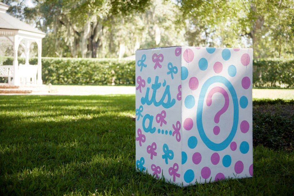 Gender Reveal Party On The Lawn Project Nursery Gender Reveal Party Reveal Ideas Gender Reveal Box