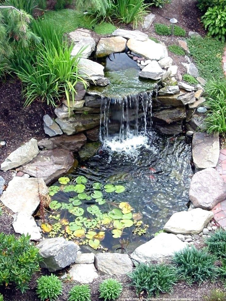 Fish Pond Gardens Garden Design, Diy Garden Pond Waterfall