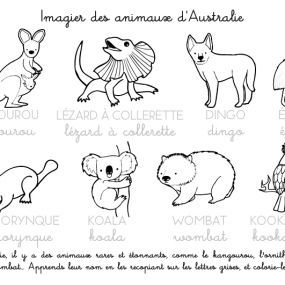 coloring pages in french about australian animals