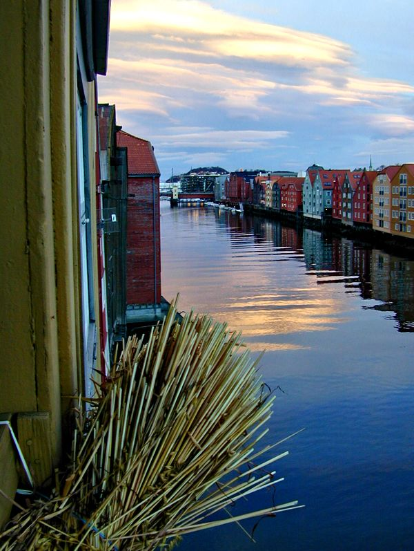 The river Nidelv i Trondheim, Norway