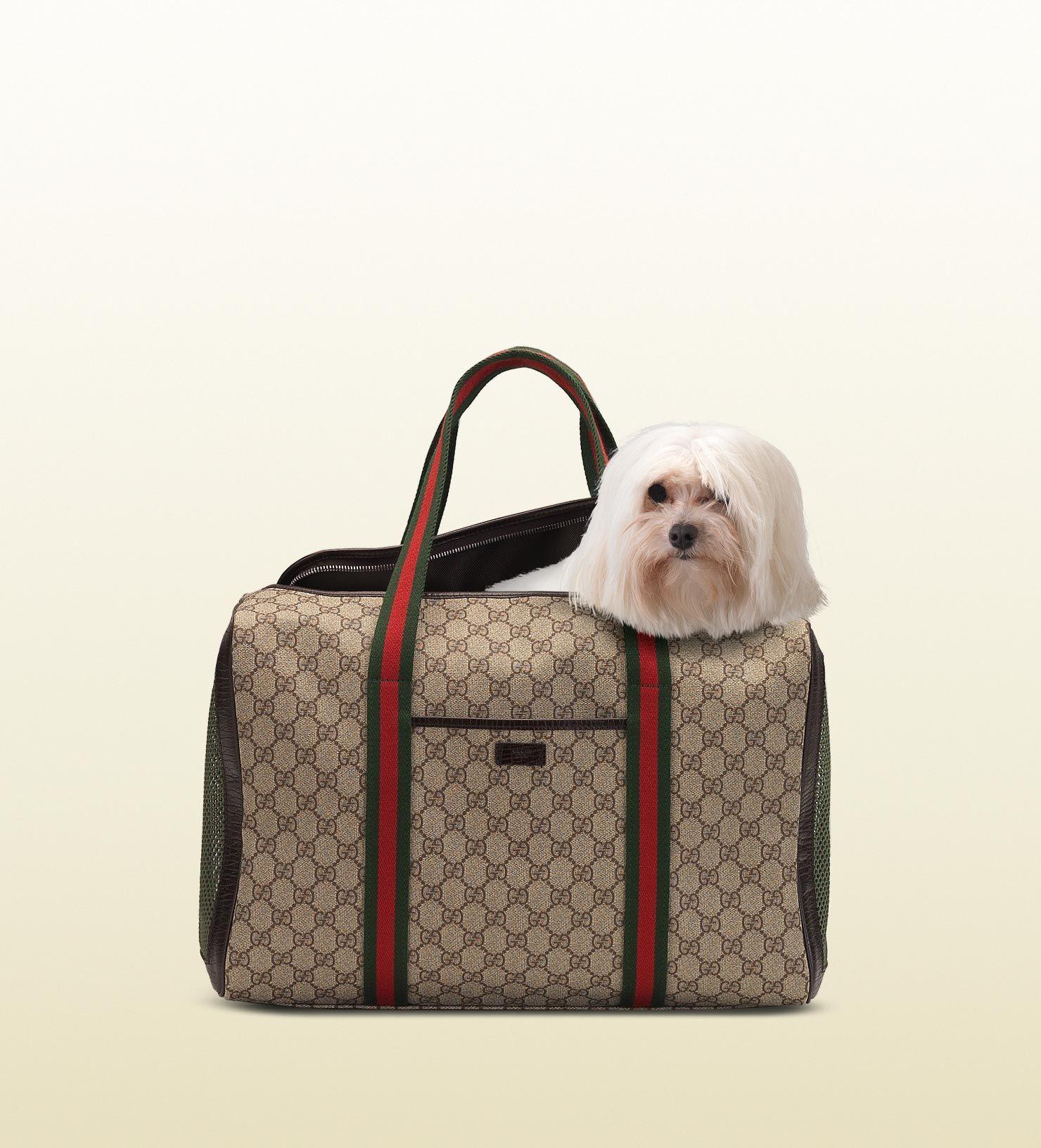 Gucci Dog Bag Designer Dog Carriers Dog Bag Bags
