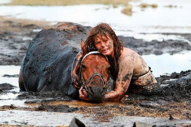 She spent three hours holding its head above the tide after it got stuck in the mud on a beach in Australia.  A horse gets stuck up to his neck in mud on a beach as the tide rises. His owner, Nicole Graham, who was enjoying an afternoon ride, stayed with him as rescuers struggled for three hours to pull him out. With moments to spare, the 500kg horse, named Astro, was freed with the help of a tractor and harness at Avalon Beach in Geelong, Victoria, Australia.